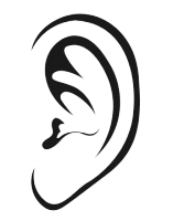Ear Training for Musicians
